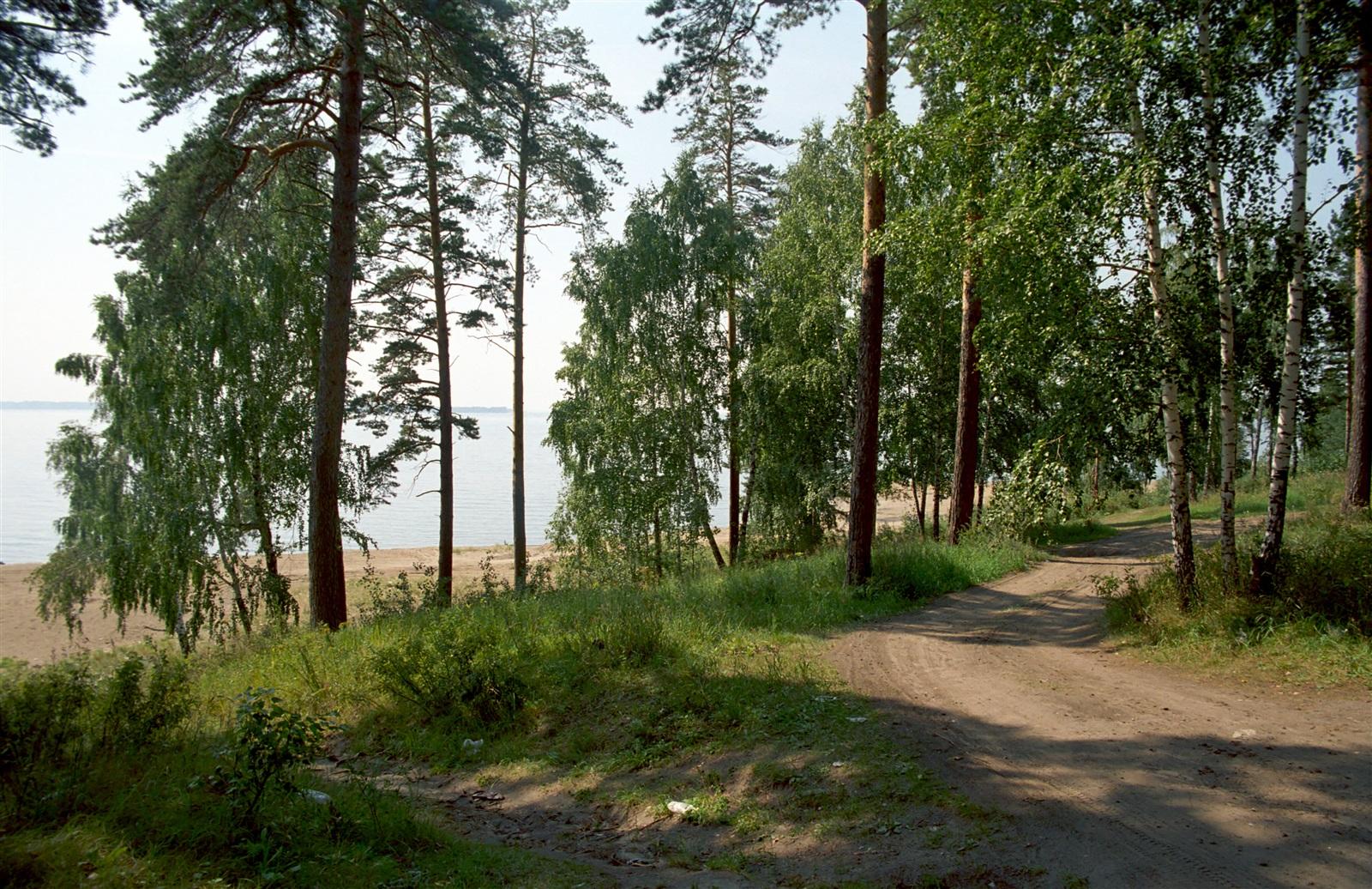 Центральный пляж академгородка фото